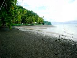 Black sand beach at low tide
