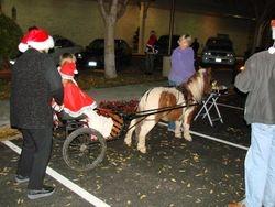 Mini Santa and Mrs Santa Claus