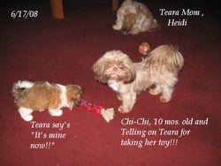 Teara steels toys!!!!