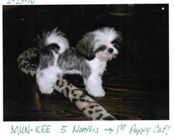 Mun-Kee (Was called Sir Wicket while here)