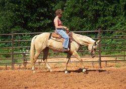 Gabbie western