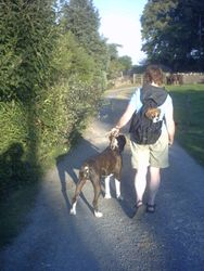 POPPY GOES FOR A WALK 2005 (shes the one in the back pack!)