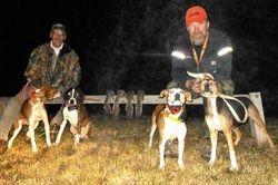 Fun hunt Gambler and pups