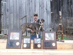 Gambler 2011 NC&FBA tree dog of the year