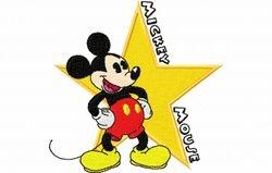 Mickey de ster 98 x 97