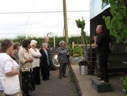 Explaining the winemaking process