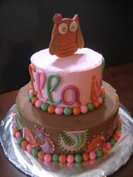 Owls and Paisley Cake