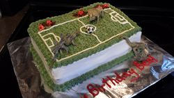 Fossils and Soccer Cake