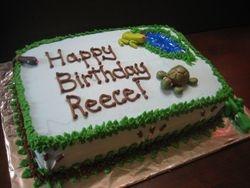 Wildlife Discovery Birthday Cake