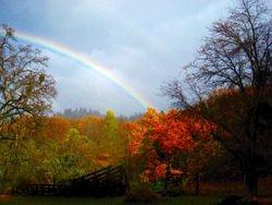 FairPlay Autumn Spectacular