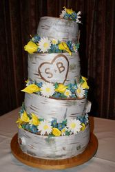 Bethany and Scott's Wedding Cake