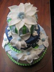 Felicia's going away cake