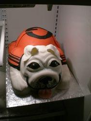 Finished Bulldog cake