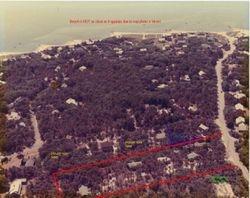 Aerial of the neighborhood