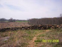 Triangular Field, 2008