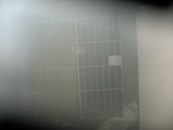 The cells on the ground floor.