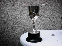 Singles Cup