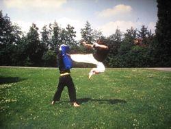 side jumping kick - jc