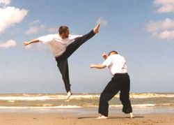 Flying spinning roundhouse kick J.C.