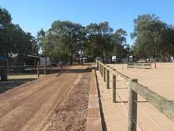 New pathway along showjump arena