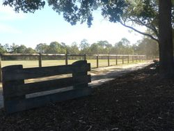 New fencing along main arena
