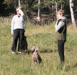 Sara, Della (Ellda) & Jenny
