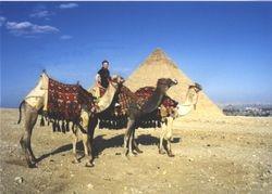 Elizabeth Ann in Egypt.