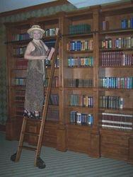 Little Librarian on a Ladder