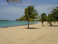 Beach in Vieques, PR