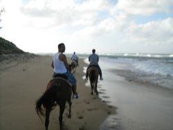 Horsebackriding, Aguadilla, PR, 2007