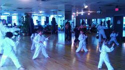 Hayabusa Karate Kids and Adult Class