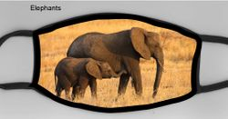 Elephants Mask