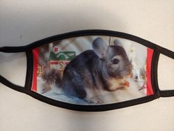 Personal Pet Photo-Create a one-of-a Kind mask with your fav photo