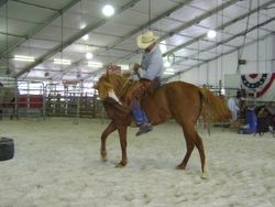 Disengaging the hind quarters during bareback ride.