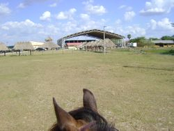 First class covered rodeo arena.