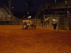 Big $$$$ to be had in the bull riding event.
