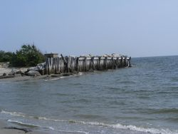 THE BULKHEADS TO SAVE THE SHORE