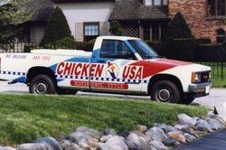 Chicken USA 1