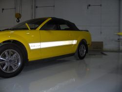 Mustang Side Reflective