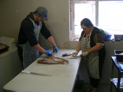 Filleting practice
