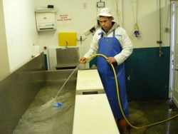 Three week filleting course at Dorans on the Pier Howth