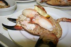 Arranmore Shellfish course