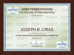 Plant Operations and Maintenance Committee