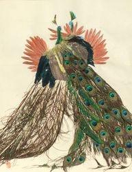Fighting Peacocks (2)