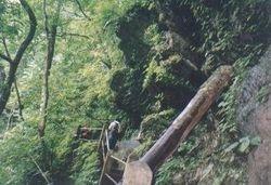 Srijangga fukku (Martam, west Sikkhim)