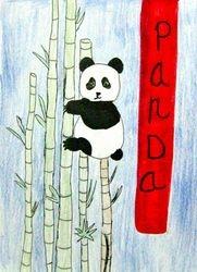 Jenny Xu, age 8, Panda