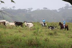 Ranchers in Ojo De Agua