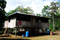 Amazon Jungle - Sani Village