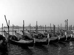 Gondolas Waiting