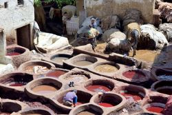 Tannery in Fes